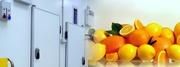 Холодильные камеры для хранения фруктов и овощей под ключ!